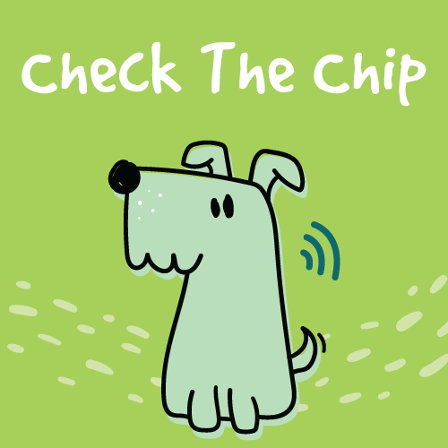 Check The Chip: Get your pet microchipped at Encanto Pet Clinic